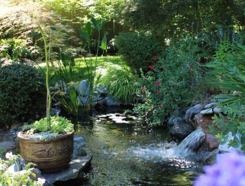 Calming garden landscape in the Pacific Northwest
